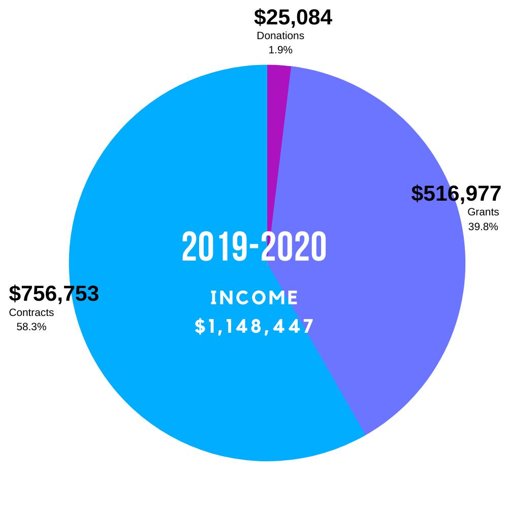 2019-20 Income Graphic