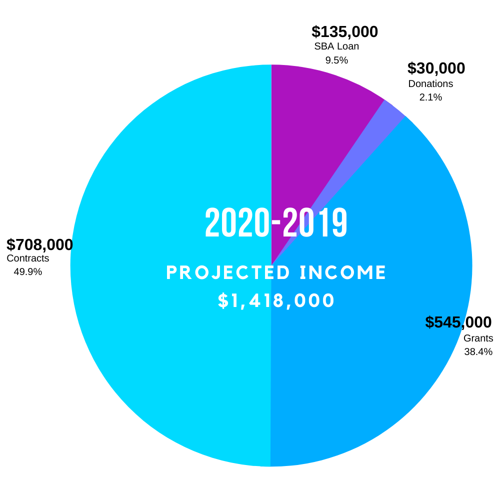 Projected Income 2020-21